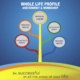 WLP social media image with life spheres